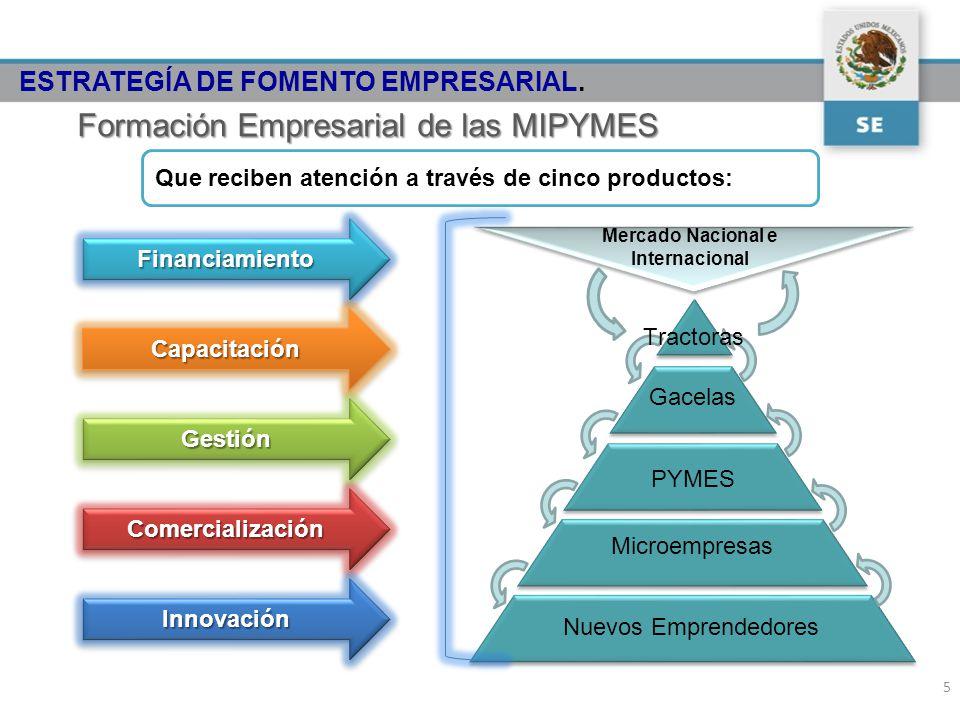 Gacelas PYMES Microempresas Nuevos Emprendedores Tractoras Mercado Nacional e InternacionalFinanciamientoFinanciamiento CapacitaciónCapacitación GestiónGestión ComercializaciónComercialización InnovaciónInnovación Formación Empresarial de las MIPYMES Que reciben atención a través de cinco productos: 5 ESTRATEGÍA DE FOMENTO EMPRESARIAL.