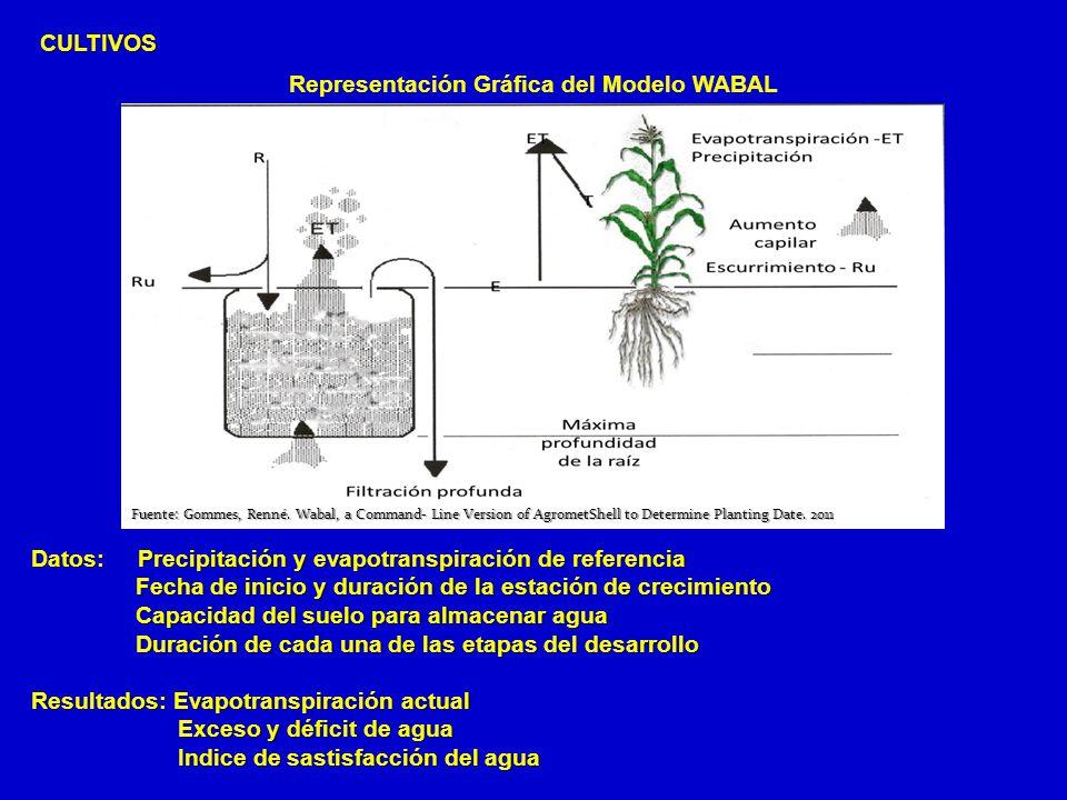 CULTIVOS Representación Gráfica del Modelo WABAL Datos: Precipitación y evapotranspiración de referencia Fecha de inicio y duración de la estación de
