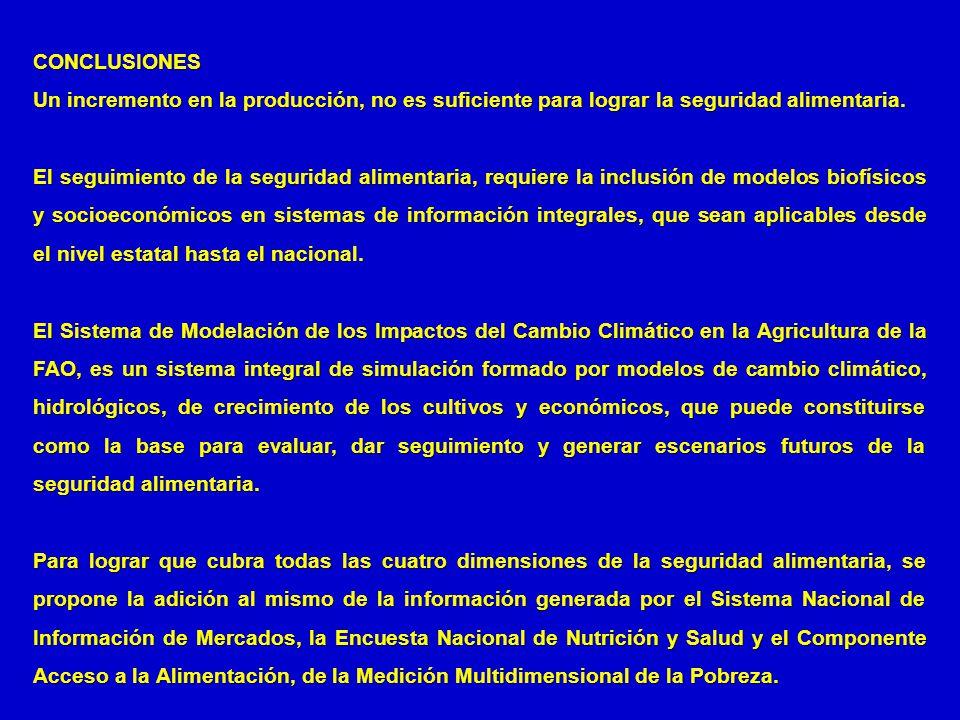 CONCLUSIONES Un incremento en la producción, no es suficiente para lograr la seguridad alimentaria. El seguimiento de la seguridad alimentaria, requie