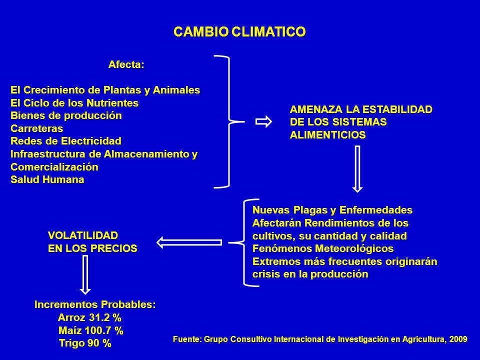 CAMBIO CLIMATICO Afecta: El Crecimiento de Plantas y Animales El Ciclo de los Nutrientes Bienes de producción Carreteras Redes de Electricidad Infraes