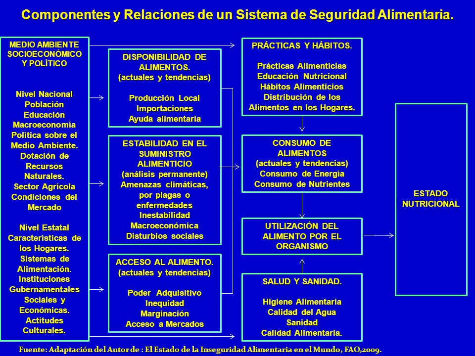 Componentes y Relaciones de un Sistema de Seguridad Alimentaria. Fuente: Adaptación del Autor de : El Estado de la Inseguridad Alimentaria en el Mundo