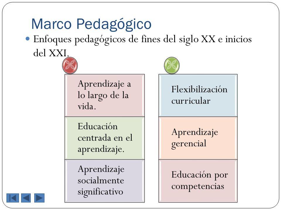 Marco Pedagógico Enfoques pedagógicos de fines del siglo XX e inicios del XXI. Aprendizaje a lo largo de la vida. Educación centrada en el aprendizaje