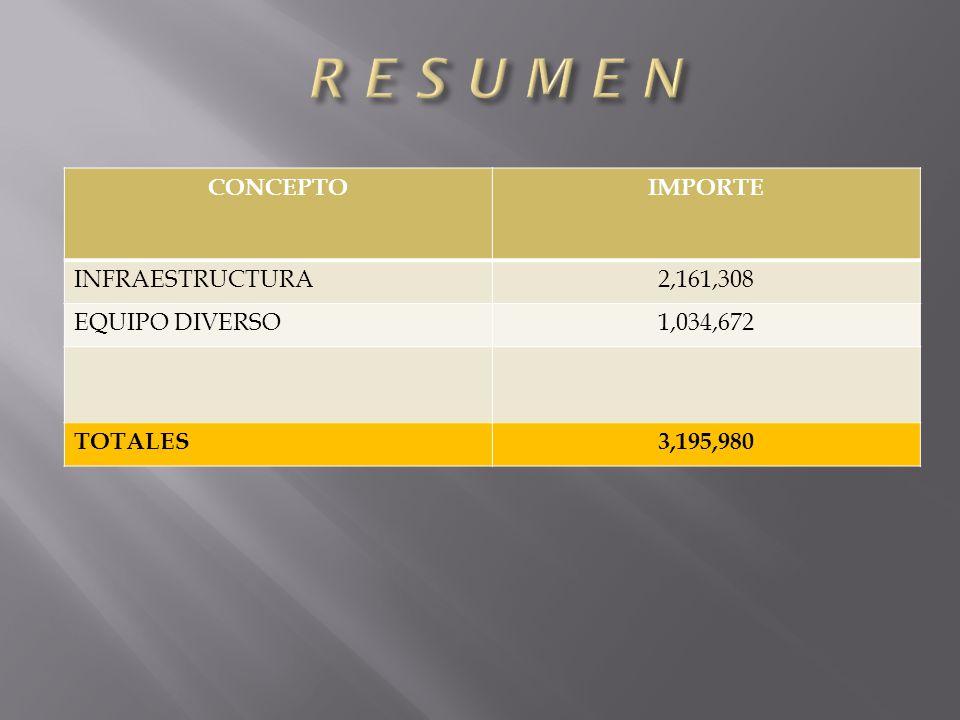 CONCEPTOIMPORTE INFRAESTRUCTURA2,161,308 EQUIPO DIVERSO1,034,672 TOTALES3,195,980