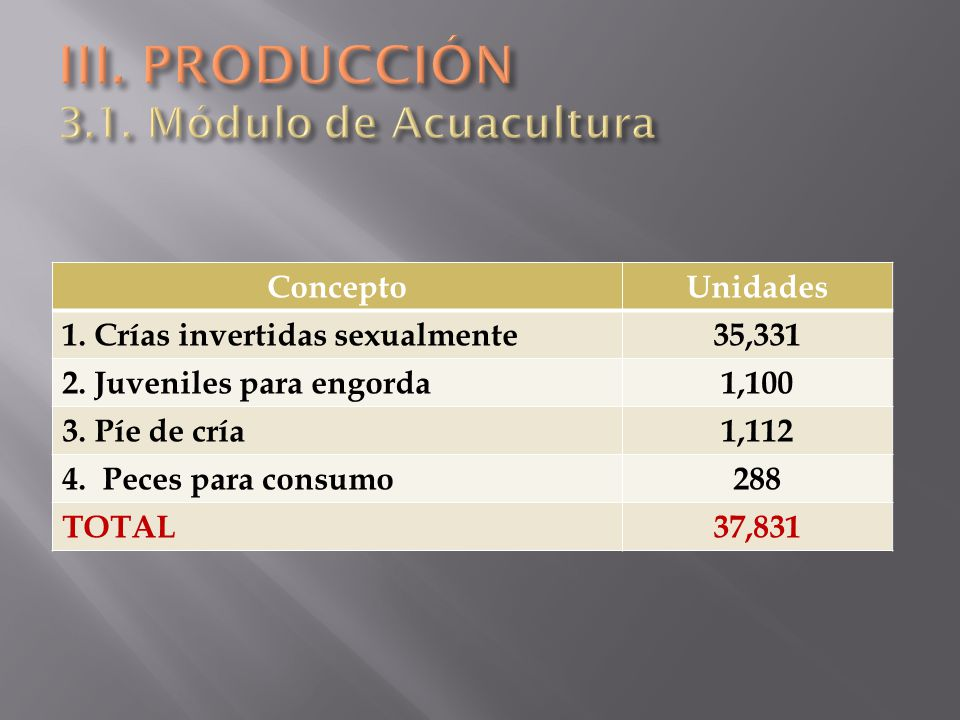 ConceptoUnidades 1. Crías invertidas sexualmente35,331 2. Juveniles para engorda1,100 3. Píe de cría1,112 4. Peces para consumo288 TOTAL37,831
