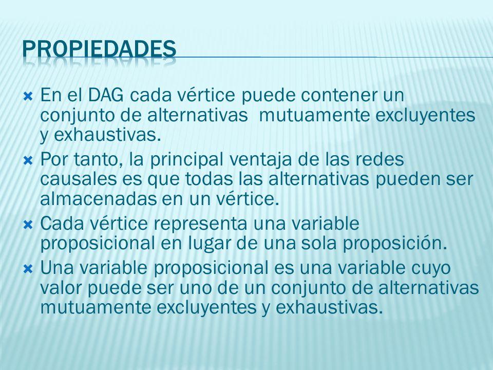 En el DAG cada vértice puede contener un conjunto de alternativas mutuamente excluyentes y exhaustivas. Por tanto, la principal ventaja de las redes c