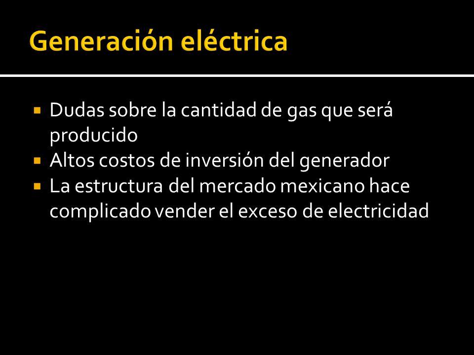 Dudas sobre la cantidad de gas que será producido Altos costos de inversión del generador La estructura del mercado mexicano hace complicado vender el