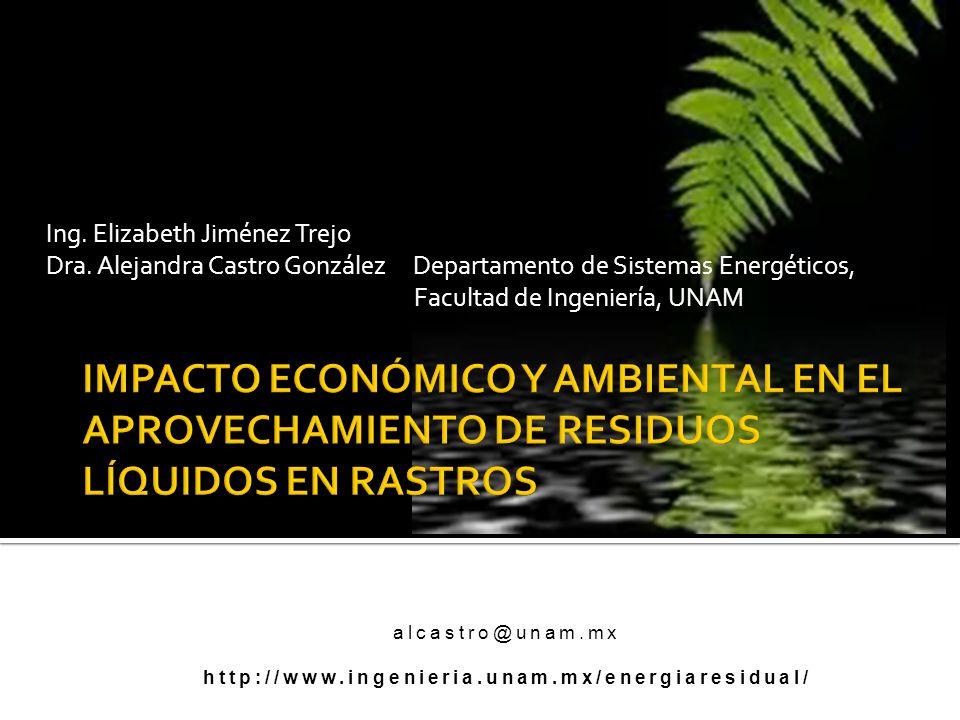Ing. Elizabeth Jiménez Trejo Dra. Alejandra Castro González Departamento de Sistemas Energéticos, Facultad de Ingeniería, UNAM alcastro@unam.mx http:/