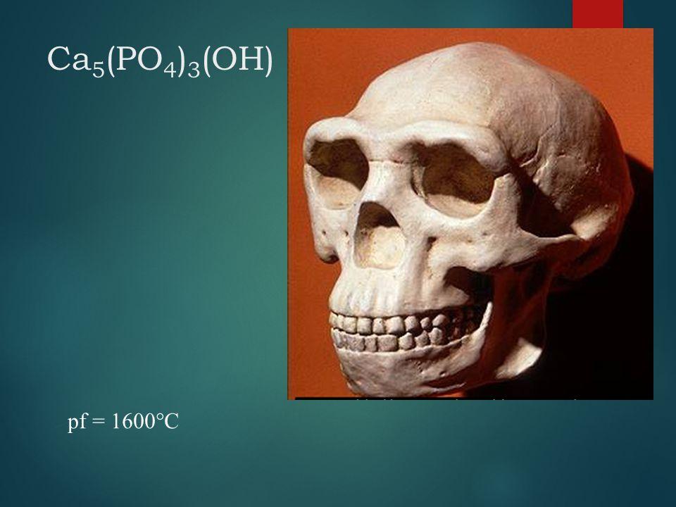 Ca 5 (PO 4 ) 3 (OH) pf = 1600°C
