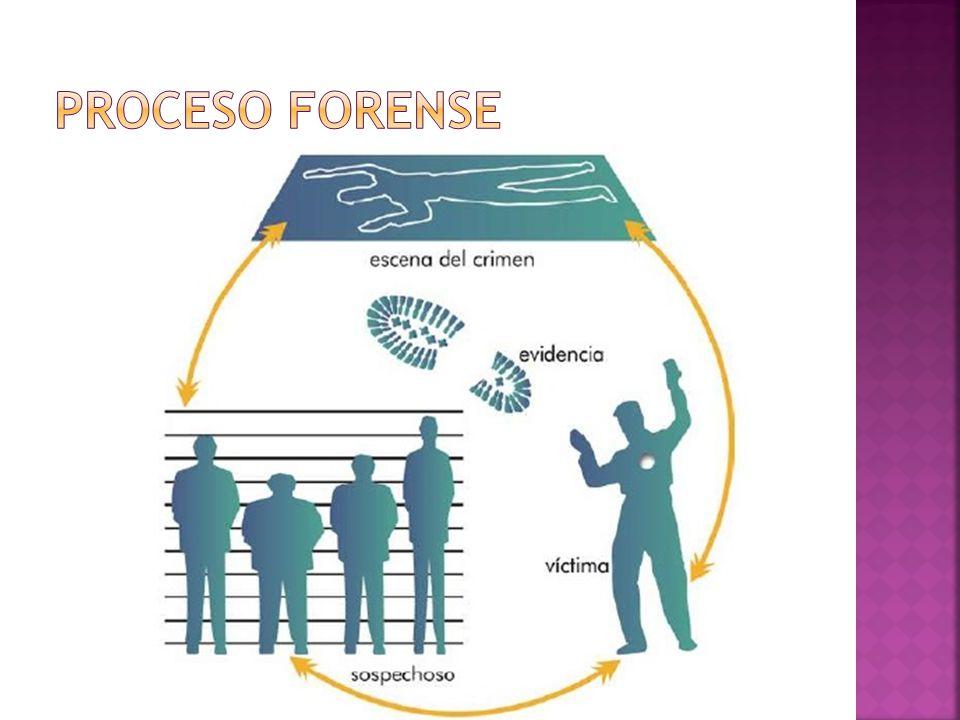 Identificar evidencia Preservar evidencia Analizar evidencia Presentar evidencia
