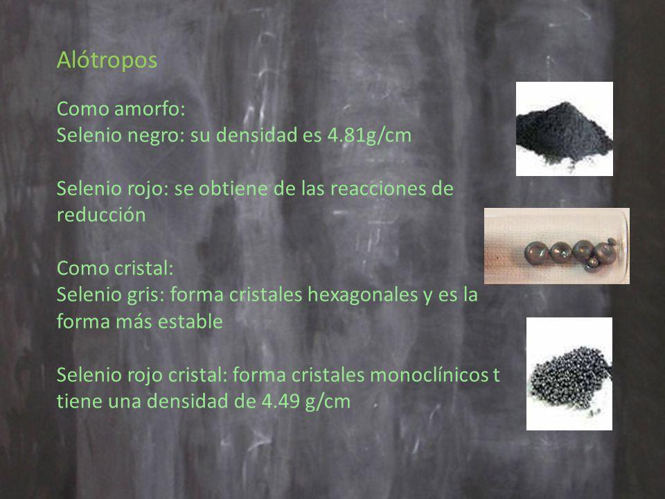 Alótropos Como amorfo: Selenio negro: su densidad es 4.81g/cm Selenio rojo: se obtiene de las reacciones de reducción Como cristal: Selenio gris: forma cristales hexagonales y es la forma más estable Selenio rojo cristal: forma cristales monoclínicos t tiene una densidad de 4.49 g/cm