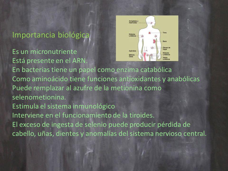 Importancia biológica Es un micronutriente Está presente en el ARN.