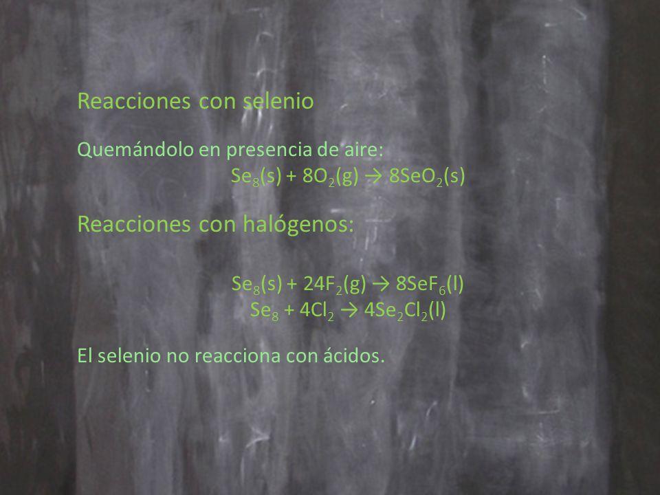 Reacciones con selenio Quemándolo en presencia de aire: Se 8 (s) + 8O 2 (g) 8SeO 2 (s) Reacciones con halógenos: Se 8 (s) + 24F 2 (g) 8SeF 6 (l) Se 8 + 4Cl 2 4Se 2 Cl 2 (l) El selenio no reacciona con ácidos.