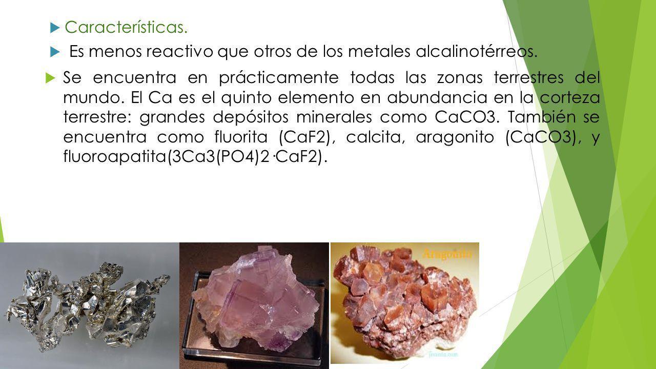 Características.Es menos reactivo que otros de los metales alcalinotérreos.