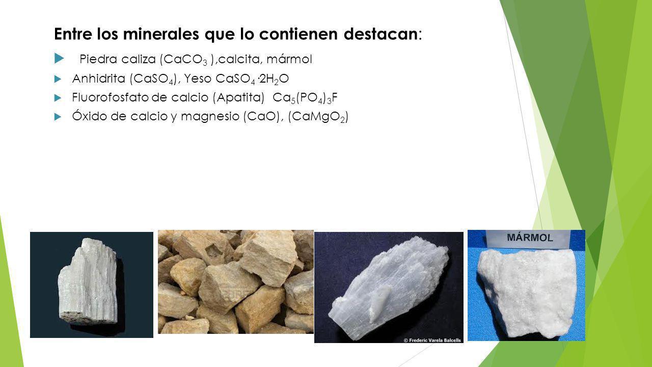 Entre los minerales que lo contienen destacan : Piedra caliza (CaCO 3 ),calcita, mármol Anhidrita (CaSO 4 ), Yeso CaSO 4 ·2H 2 O Fluorofosfato de calcio (Apatita) Ca 5 (PO 4 ) 3 F Óxido de calcio y magnesio (CaO), (CaMgO 2 )