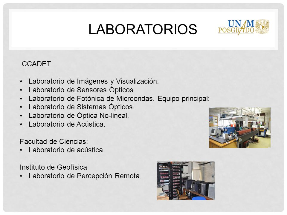 Organización del Posgrado en Ingeniería Comité Académico.
