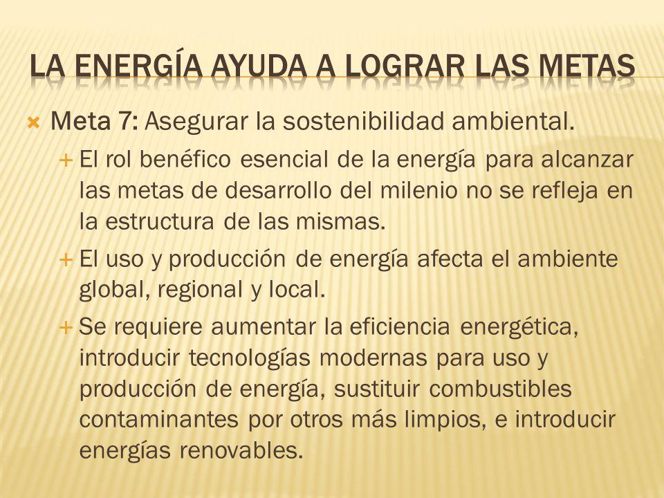Meta 7: Asegurar la sostenibilidad ambiental.