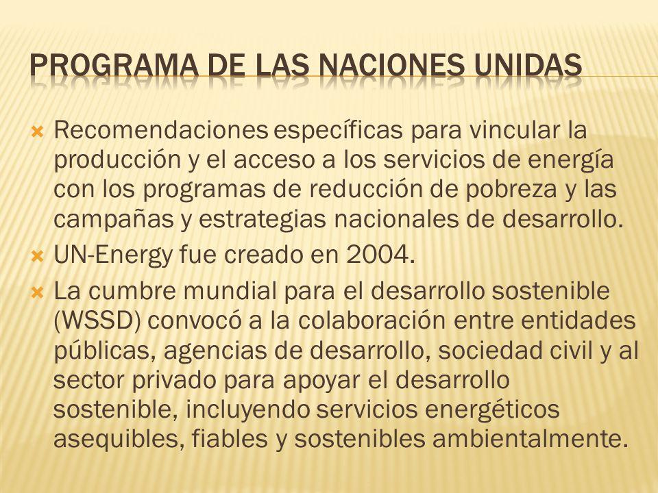 Movilizar recursos financieros para expandir la inversión en energía y los servicios Los países en desarrollo y en transición enfrentan grandes inversiones para cubrir todas sus necesidades energéticas.