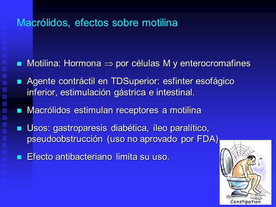 Macrólidos, efectos sobre motilina Motilina: Hormona por células M y enterocromafines Motilina: Hormona por células M y enterocromafines Agente contráctil en TDSuperior: esfinter esofágico inferior, estimulación gástrica e intestinal.