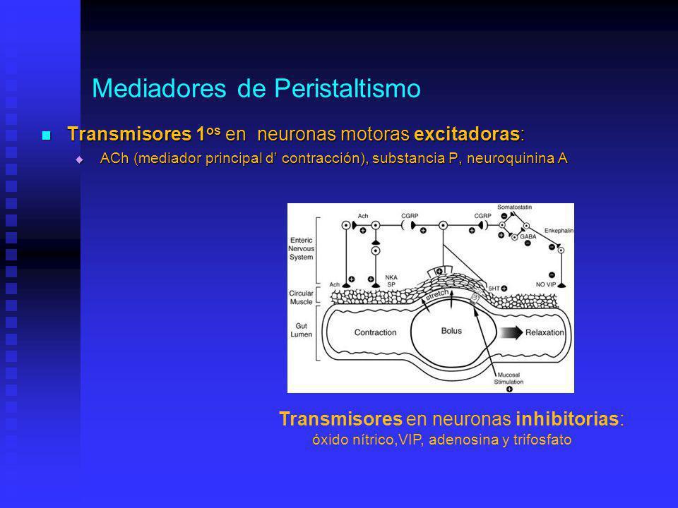 Mediadores de Peristaltismo Transmisores 1 os en neuronas motoras excitadoras: Transmisores 1 os en neuronas motoras excitadoras: ACh (mediador principal d contracción), substancia P, neuroquinina A ACh (mediador principal d contracción), substancia P, neuroquinina A Transmisores en neuronas inhibitorias: óxido nítrico,VIP, adenosina y trifosfato