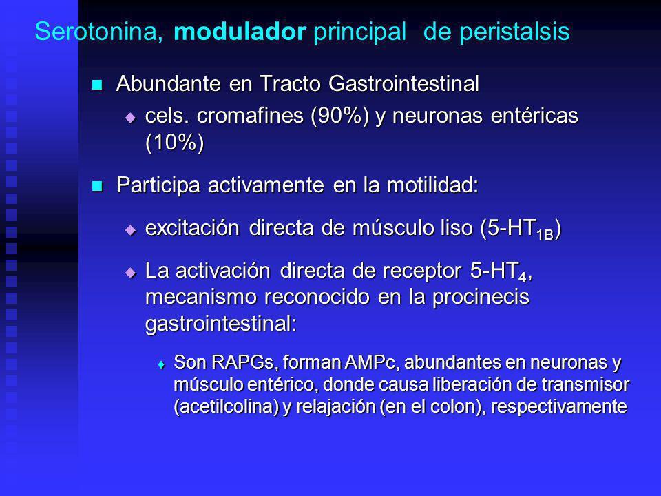 Serotonina, modulador principal de peristalsis Abundante en Tracto Gastrointestinal Abundante en Tracto Gastrointestinal cels.
