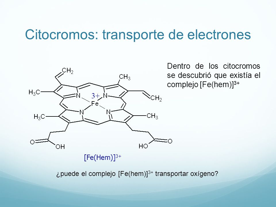 Citocromos: transporte de electrones [Fe(Hem)] 3+ 3+ Dentro de los citocromos se descubrió que existía el complejo [Fe(hem)] 3+ ¿puede el complejo [Fe