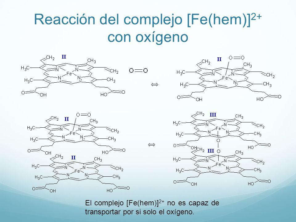 Reacción del complejo [Fe(hem)] 2+ con oxígeno II II III El complejo [Fe(hem)] 2+ no es capaz de transportar por si solo el oxígeno.