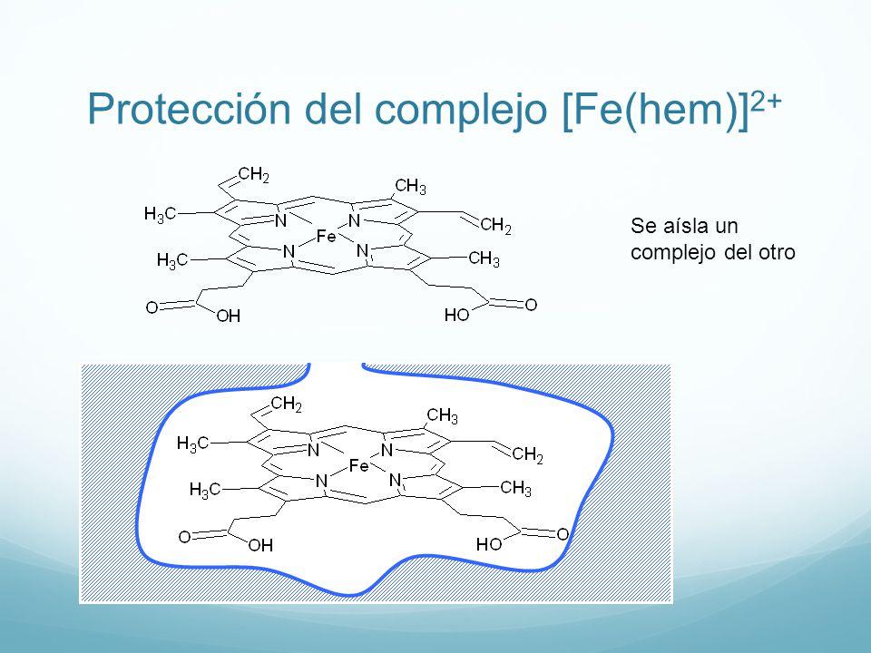 Citocromos: transporte de electrones [Fe(Hem)] 3+ 3+ Dentro de los citocromos se descubrió que existía el complejo [Fe(hem)] 3+ ¿puede el complejo [Fe(hem)] 3+ transportar oxígeno?