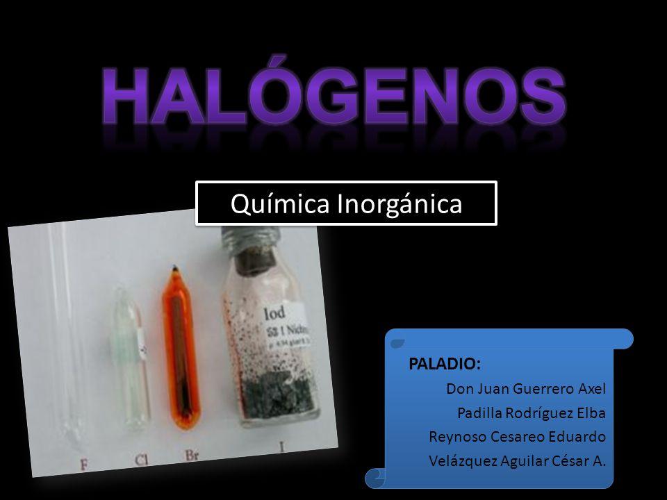 Química Inorgánica PALADIO: Don Juan Guerrero Axel Padilla Rodríguez Elba Reynoso Cesareo Eduardo Velázquez Aguilar César A. PALADIO: Don Juan Guerrer