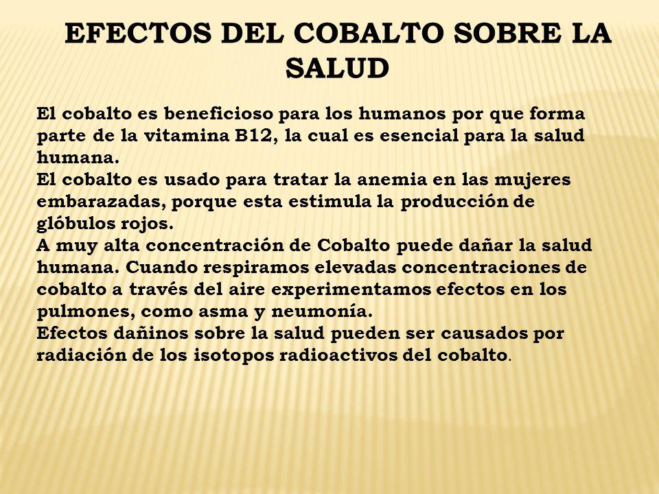 EFECTOS DEL COBALTO SOBRE LA SALUD El cobalto es beneficioso para los humanos por que forma parte de la vitamina B12, la cual es esencial para la salu