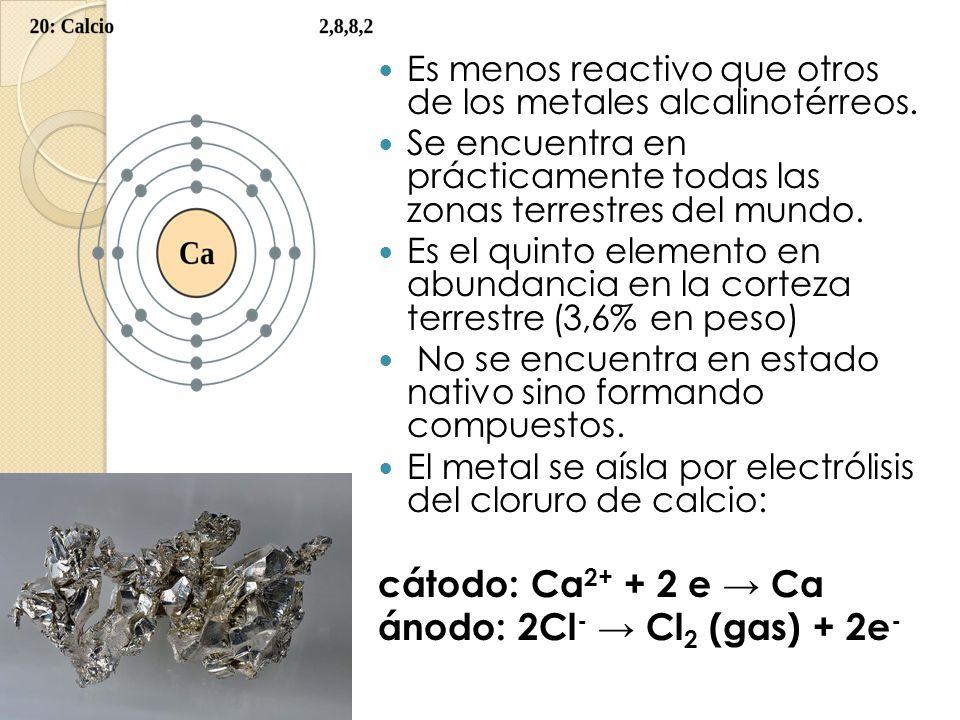 Es menos reactivo que otros de los metales alcalinotérreos. Se encuentra en prácticamente todas las zonas terrestres del mundo. Es el quinto elemento