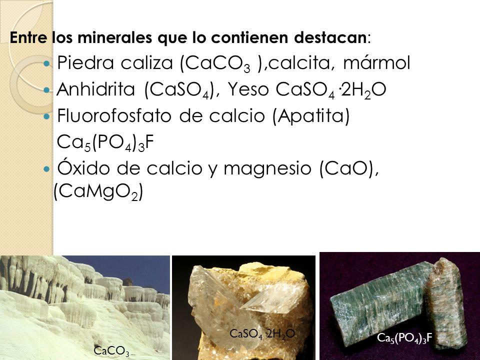 Entre los minerales que lo contienen destacan : Piedra caliza (CaCO 3 ),calcita, mármol Anhidrita (CaSO 4 ), Yeso CaSO 4 ·2H 2 O Fluorofosfato de calc