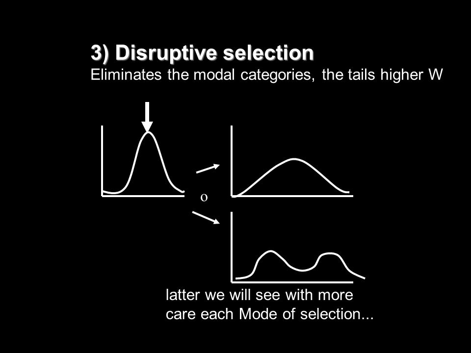 3) Disruptive selection Eliminates the modal categories, the tails higher W latter we will see with more care each Mode of selection... o