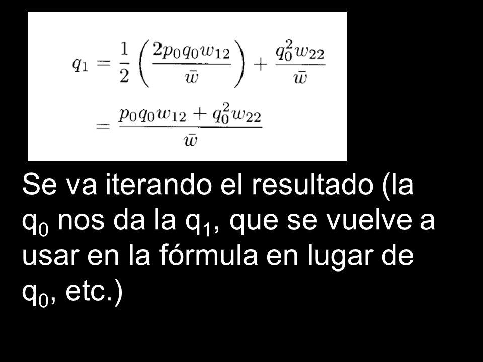 Se va iterando el resultado (la q 0 nos da la q 1, que se vuelve a usar en la fórmula en lugar de q 0, etc.)