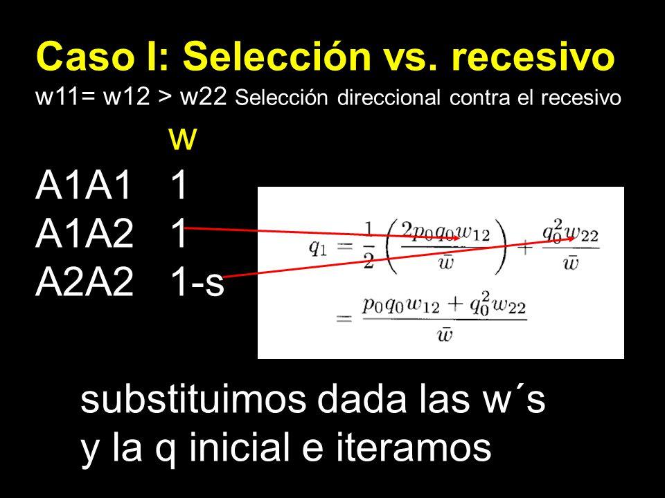 Caso I: Selección vs. recesivo w11= w12 > w22 Selección direccional contra el recesivo w A1A11 A1A21 A2A21-s substituimos dada las w´s y la q inicial