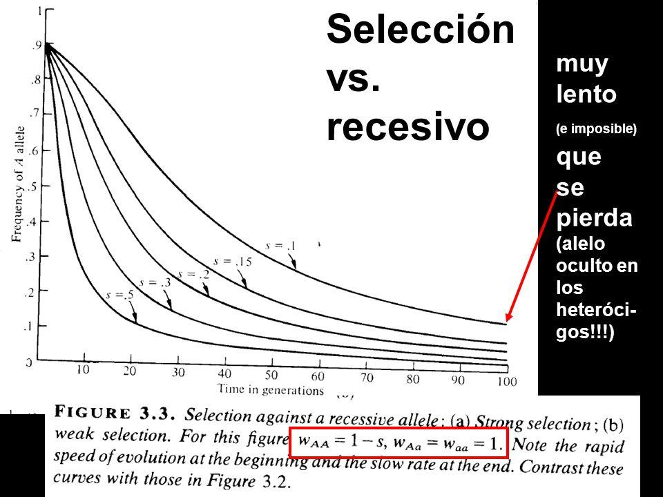 Selección vs. recesivo muy lento (e imposible) que se pierda (alelo oculto en los heteróci- gos!!!)