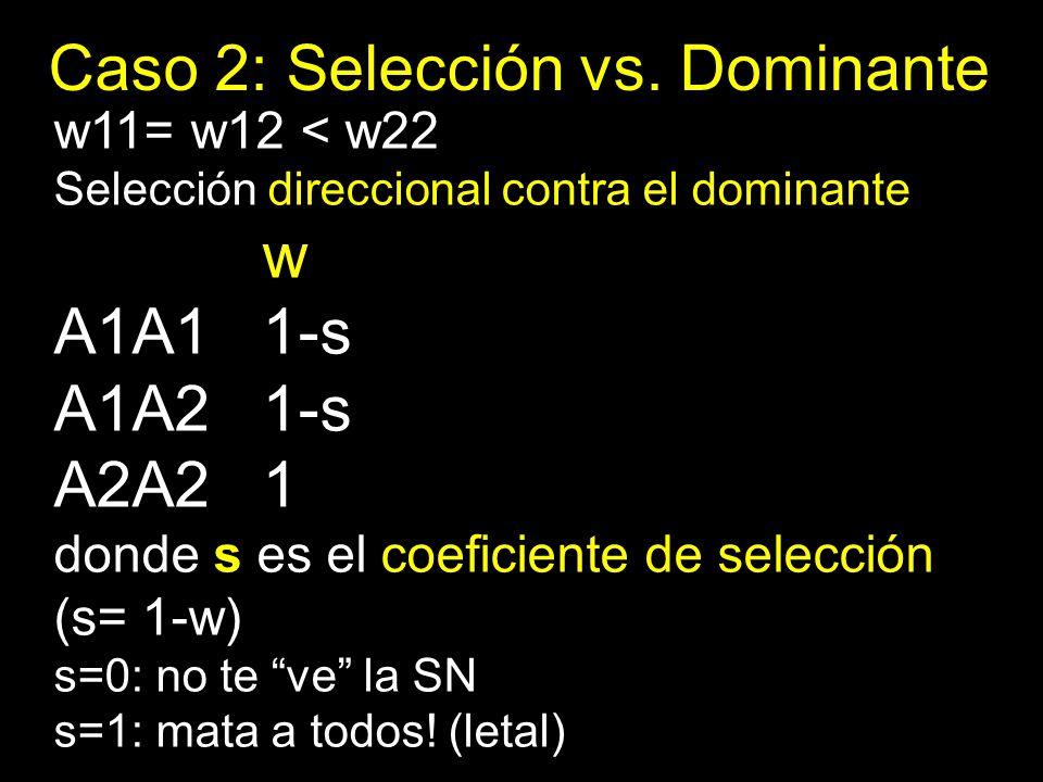 Caso 2: Selección vs. Dominante w11= w12 < w22 Selección direccional contra el dominante w A1A11-s A1A21-s A2A21 donde s es el coeficiente de selecció