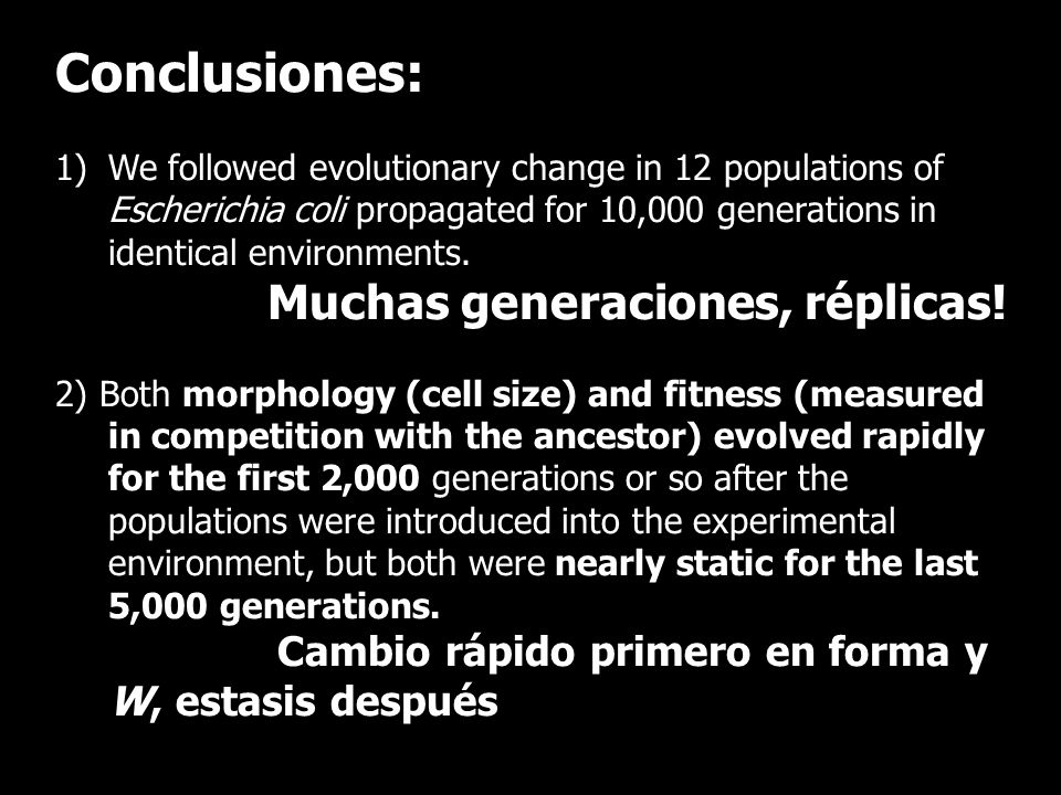 Conclusiones: 1)We followed evolutionary change in 12 populations of Escherichia coli propagated for 10,000 generations in identical environments. Muc