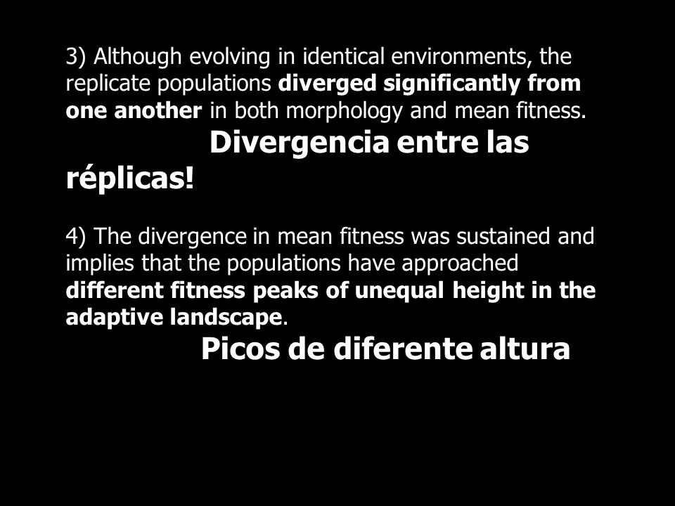 3) Although evolving in identical environments, the replicate populations diverged significantly from one another in both morphology and mean fitness.