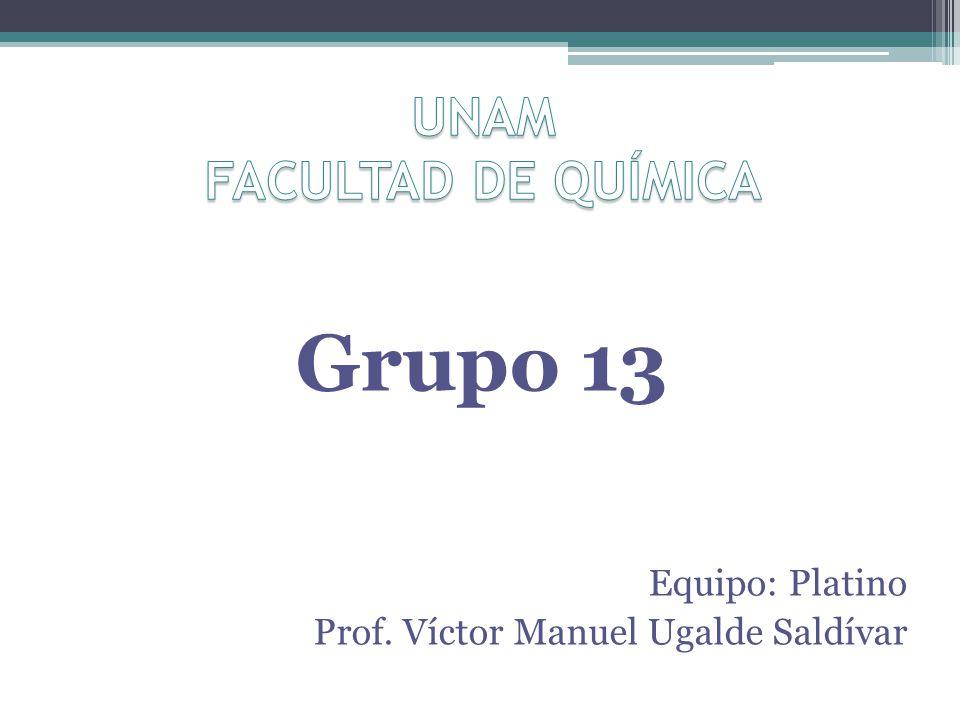 Grupo 13 Equipo: Platino Prof. Víctor Manuel Ugalde Saldívar