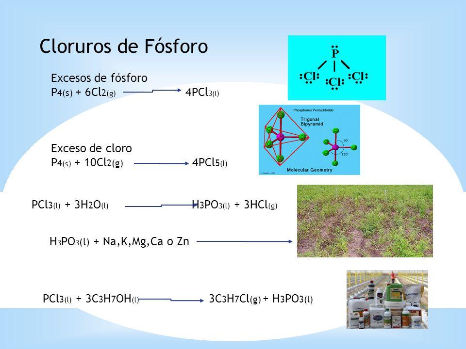 Cloruros de Fósforo Excesos de fósforo P 4(s) + 6Cl 2 (g) 4PCl 3 (l ) Exceso de cloro P 4 (s) + 10Cl 2(g) 4PCl 5 (l) PCl 3 (l) + 3H 2 O (l) H 3 PO 3(l