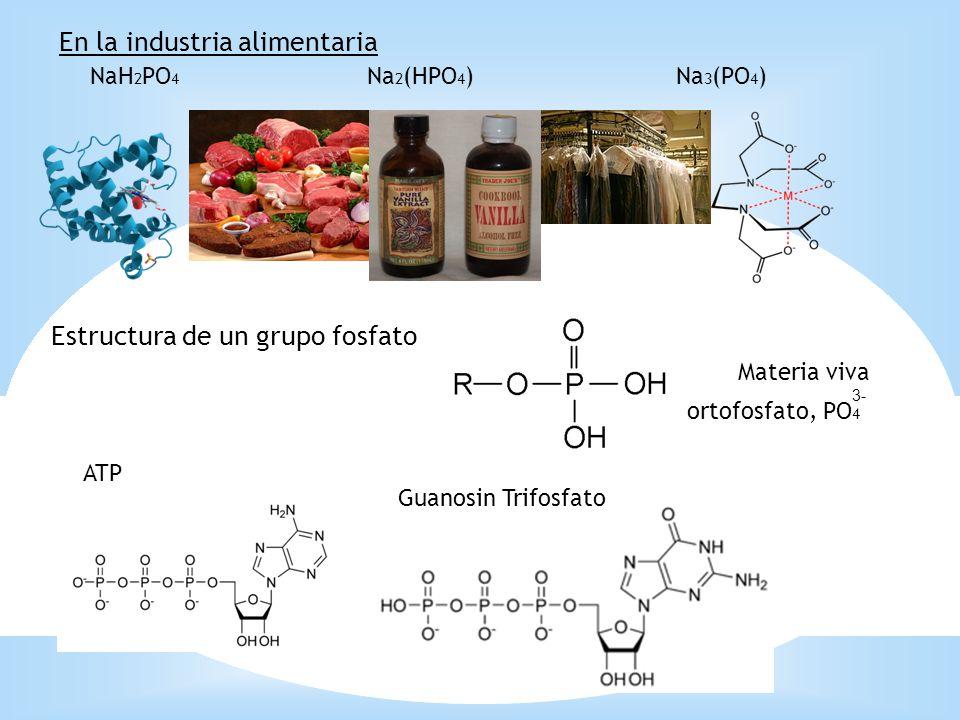 NaH 2 PO 4 Na 2 (HPO 4 )Na 3 (PO 4 ) En la industria alimentaria Estructura de un grupo fosfato Materia viva ortofosfato, PO 4 ATP Guanosin Trifosfato