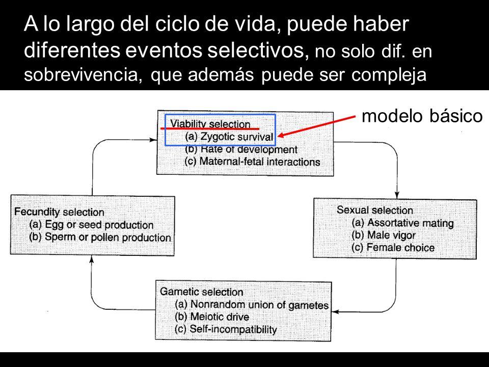 medias armónicas w genotipos en todos los ambientes