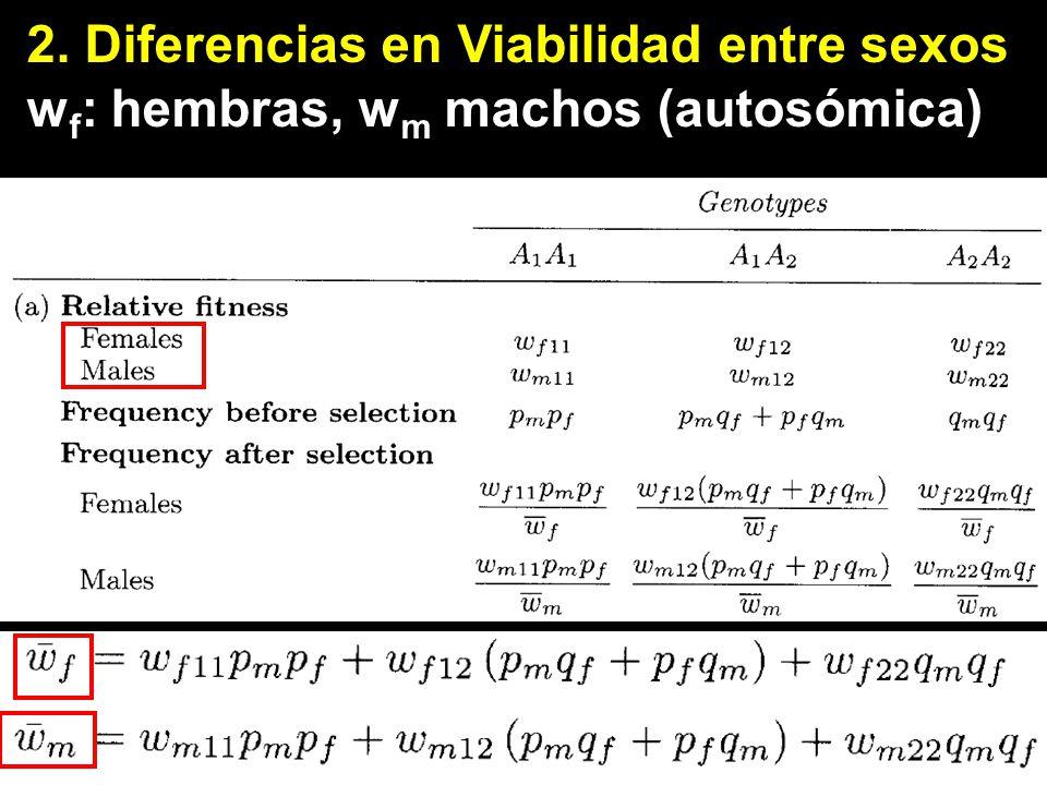 Diferencias en Viabilidad entre sexos wf: hembras, wm machos se puede definir las ec. de incremento
