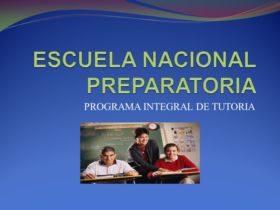 PROGRAMA INTEGRAL DE TUTORIA