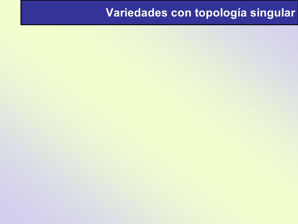 Variedades con topología singular