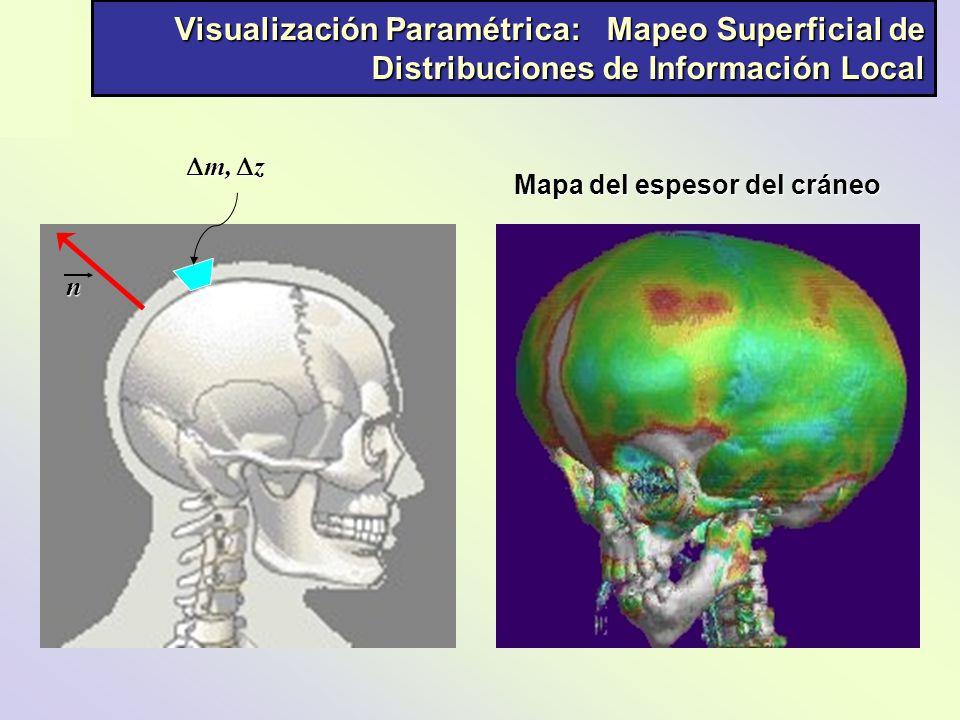 Visualización Paramétrica: Mapeo Superficial de Distribuciones de Información Local n m, z m, z Mapa del espesor del cráneo