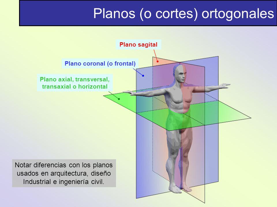 Planos (o cortes) ortogonales Plano sagittal Plano coronal (o frontal) Plano axial, transversal, transaxial o horizontal Notar diferencias con los pla