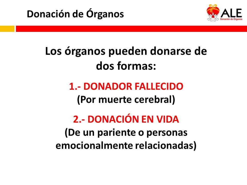 Donación de Órganos Los órganos pueden donarse de dos formas: 1.- DONADOR FALLECIDO (Por muerte cerebral) 2.- DONACIÓN EN VIDA (De un pariente o perso