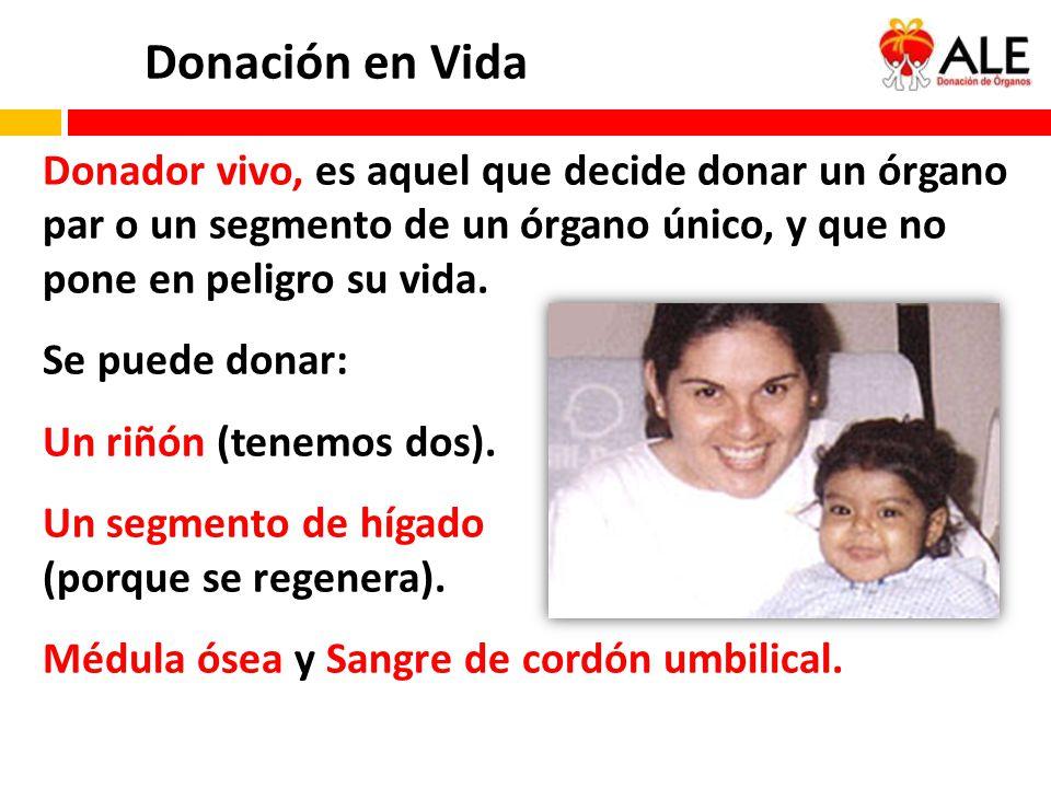 Donador vivo, es aquel que decide donar un órgano par o un segmento de un órgano único, y que no pone en peligro su vida. Se puede donar: Un riñón (te