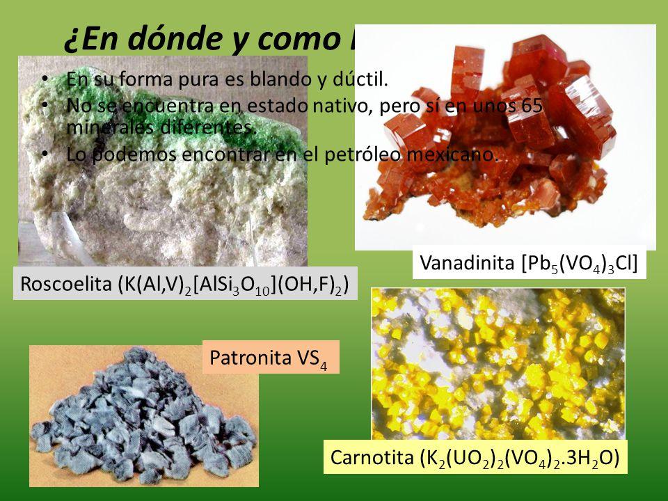 ¿En dónde y como lo encontramos? Carnotita (K 2 (UO 2 ) 2 (VO 4 ) 2.3H 2 O) Roscoelita (K(Al,V) 2 [AlSi 3 O 10 ](OH,F) 2 ) Vanadinita [Pb 5 (VO 4 ) 3